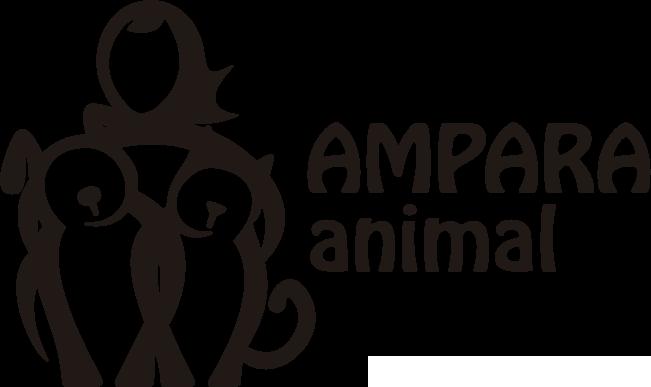 Adoção de cães SP   Ampara Animal