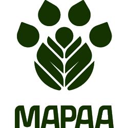 Adoção de Cães Sp   MAPAA