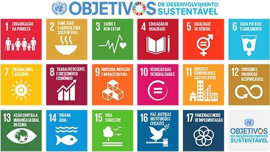 comportamento do consumidor - Objetivos da ONU